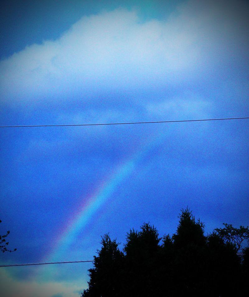 Rainbow2 copy