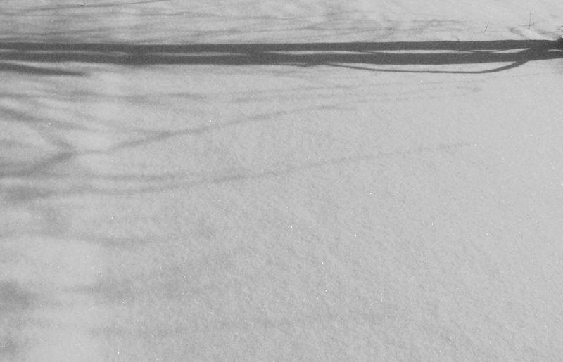 Wintermorningcalm_edited-1 copy 2