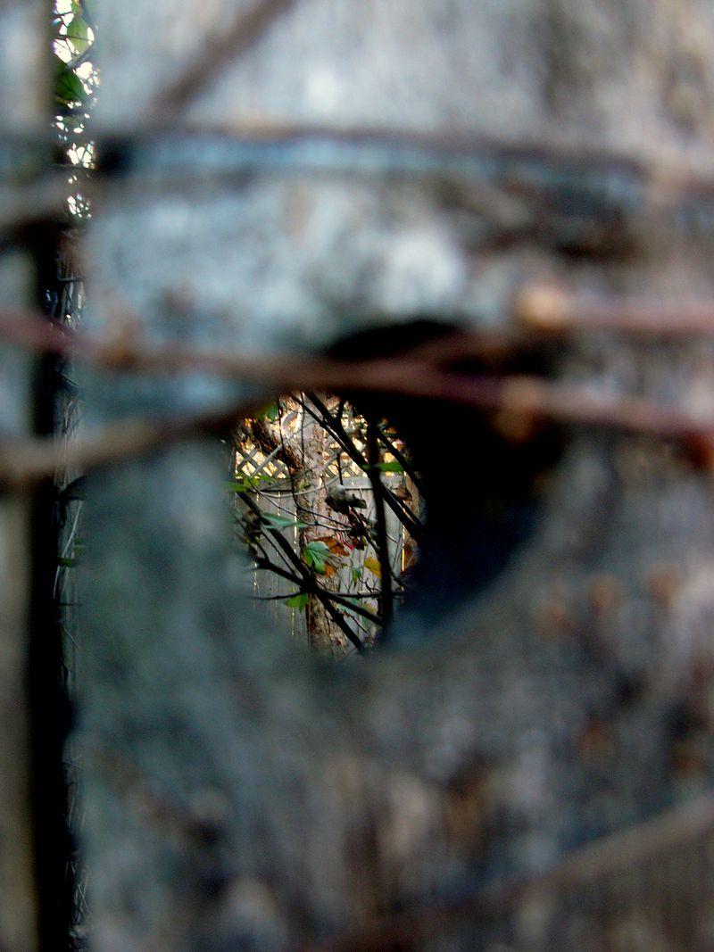 Fencehole